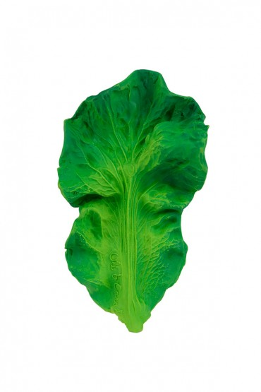 Mondedor Kendall The Kale